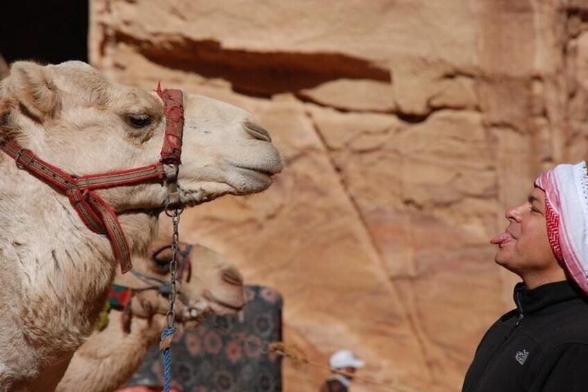 Local Bedouins