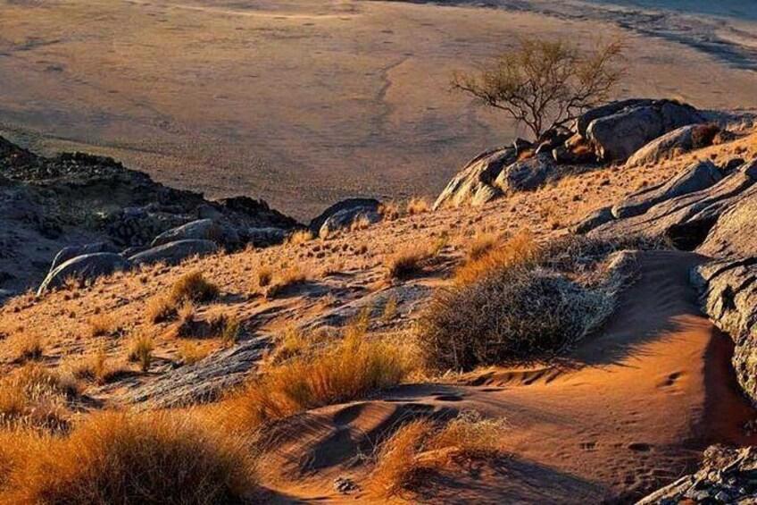 Show item 5 of 6. 4 Day Damaraland & Skeleton Coast-Namibia (Accommodated)