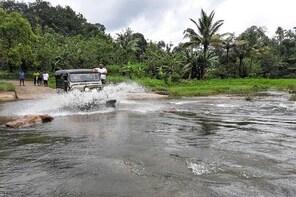 Munnar Jeep-Safari