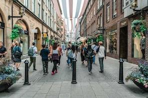 Stockholm City Private Walking Tour