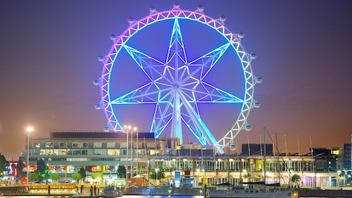 The Melbourne Star Observation Wheel illuminated at night in Melbourne