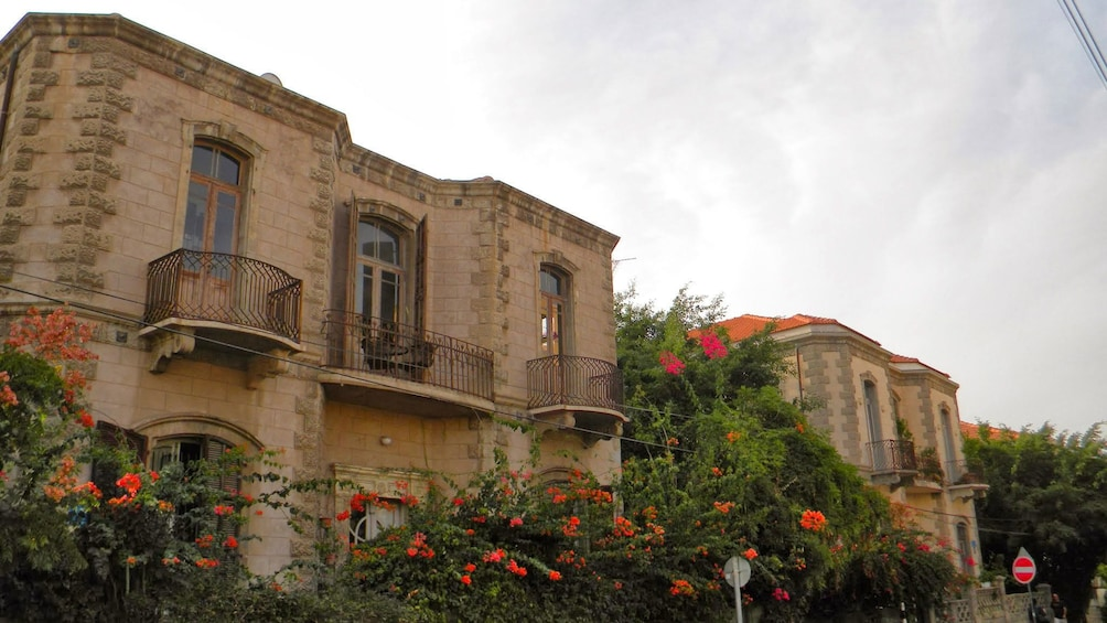 Show item 6 of 6. Flowers growing infront of a home in Jerusalem