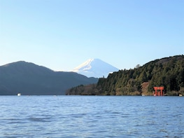 Mt. Fuji & Hakone - One Day Private Tour