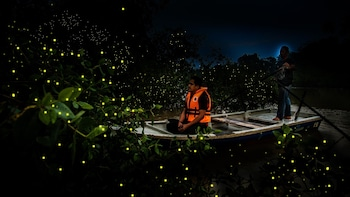 Magical fireflies and Kampong Life