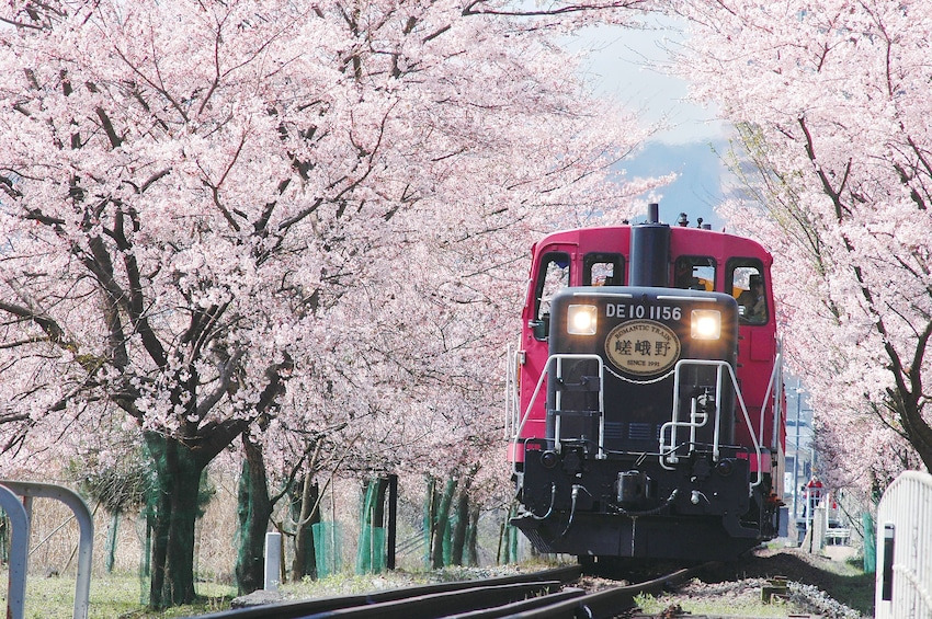 Show item 1 of 10. Kyoto and Sagano Romantic Train Tour with Halal Lunch