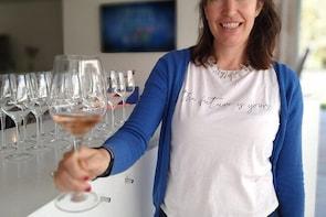 Wine Experience in Rosario - Organic Wines and Vegan Snack Board