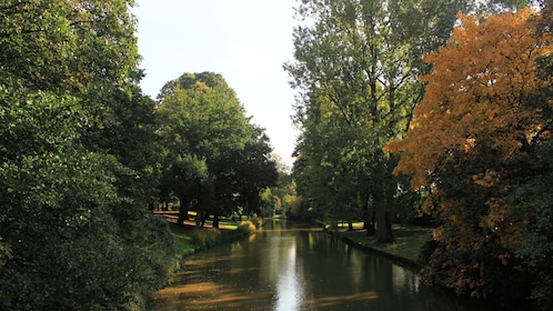 River surrounded by trees in Bruges