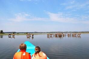 1 Day Lake Nakuru & Lake Naivasha Boat Excursion Safari