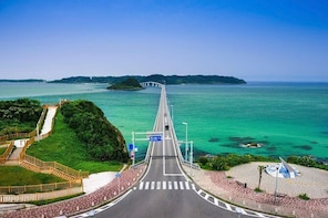Yamaguchi Private Chartered Car Tour From Fukuoka with National Licensed Gu...