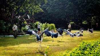 Guangzhou Chimelong Birds Park Admission Ticket
