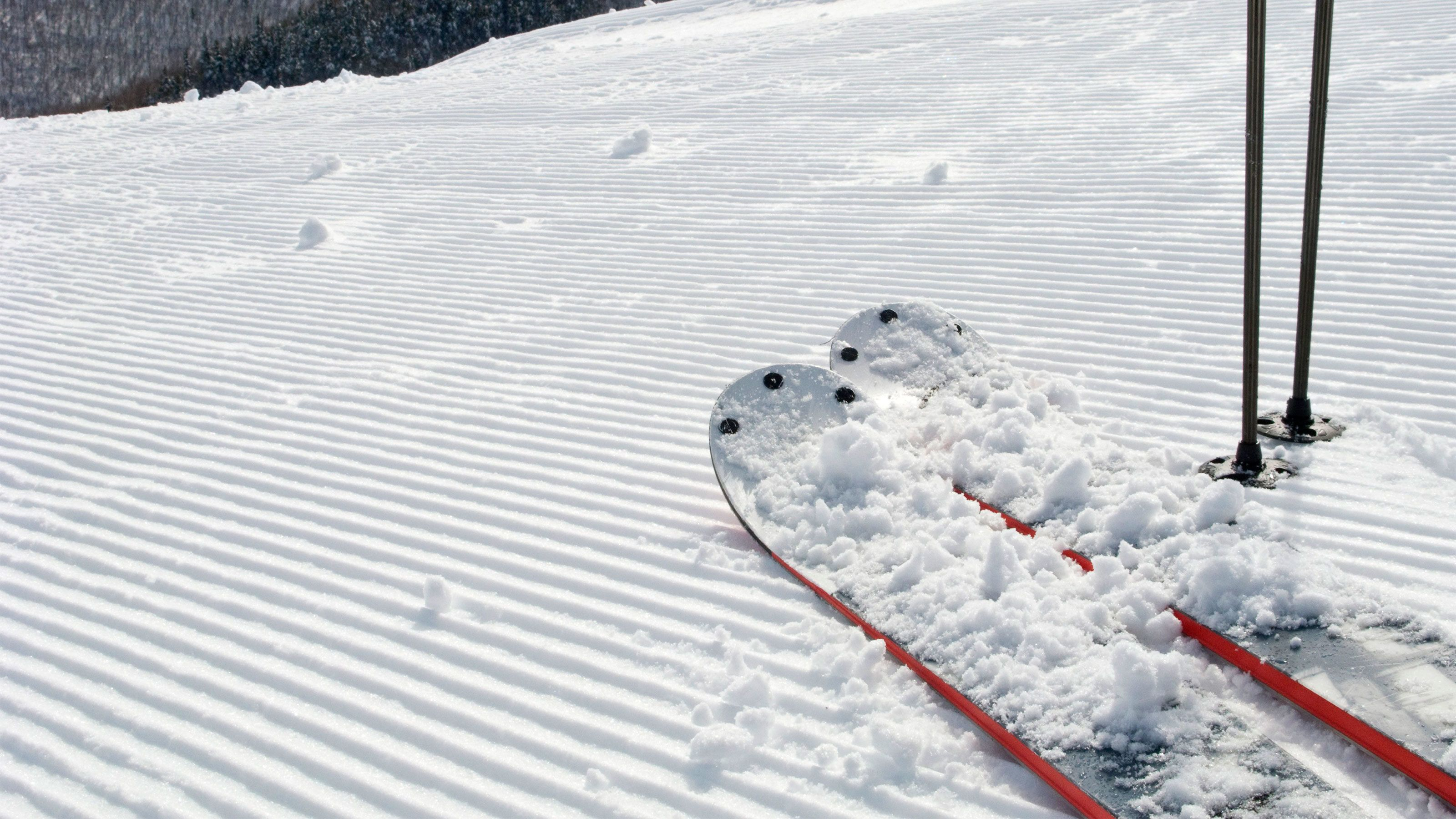 Fresh coat of snow covers a pair of skis