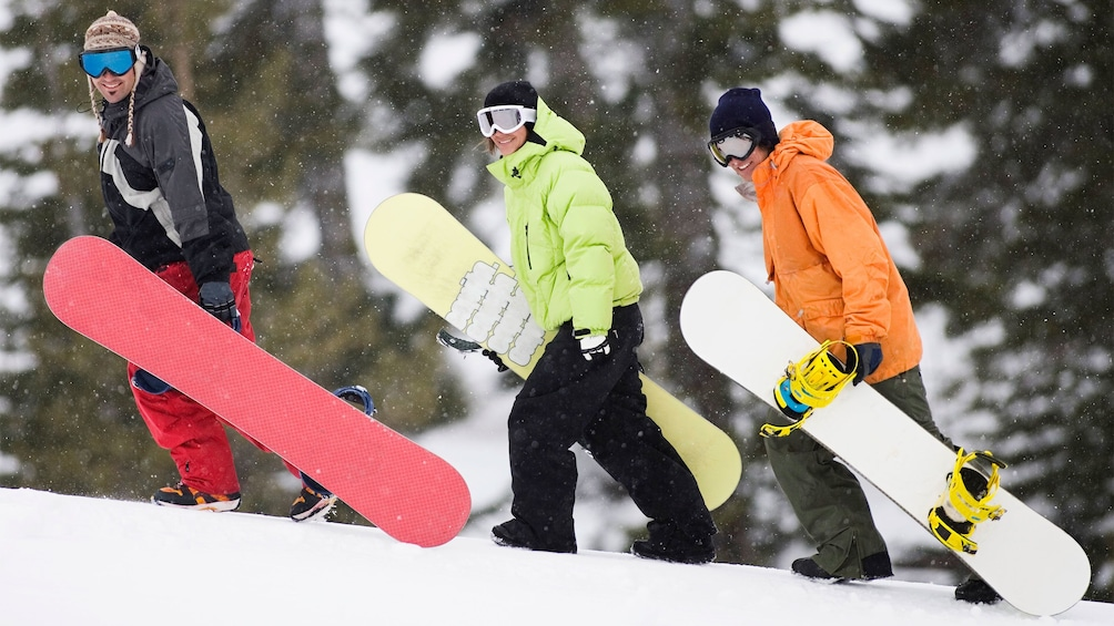 Show item 5 of 5. Three snowboarders strolling along the slopes of the Canadian Rockies