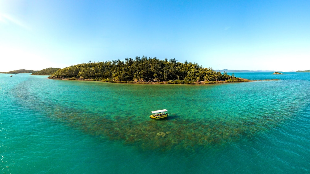 Show item 1 of 10. Airlie Beach Glass Bottom Boat Tour