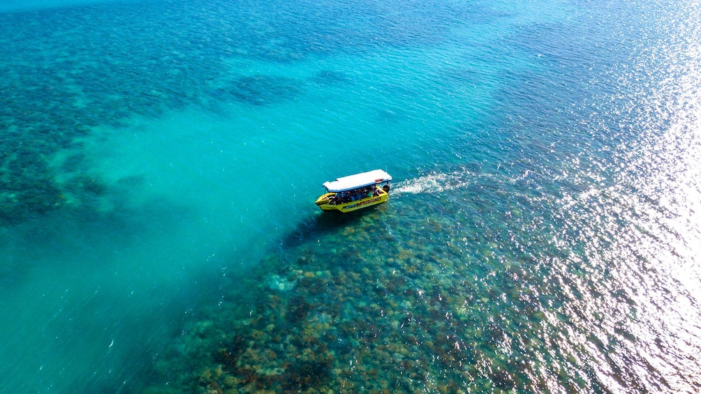 Show item 2 of 10. Airlie Beach Glass Bottom Boat Tour