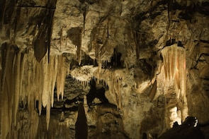 Private - Blue Mountain with Jenolan cave & Cruise