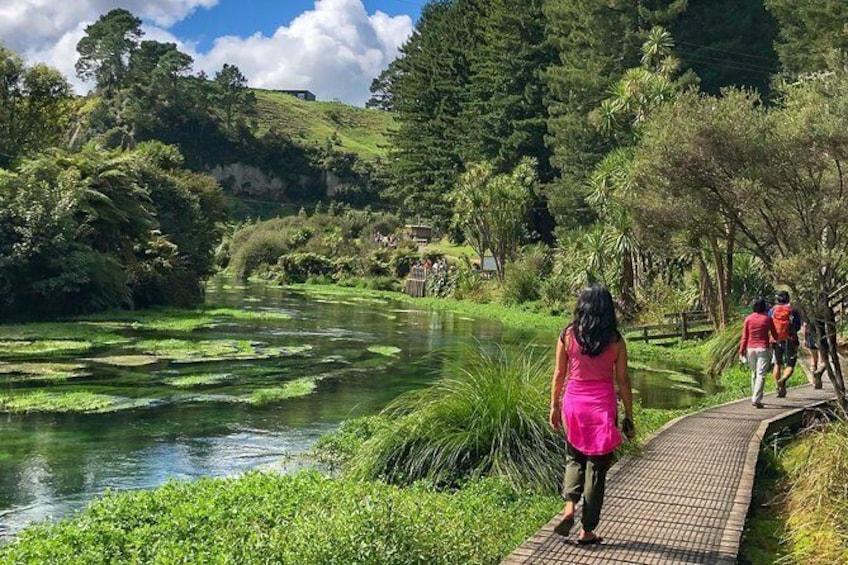 Show item 2 of 7. Nature and Nosh Explore & Taste Experience Waikato