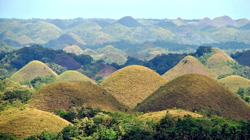The hilly landscape of the countryside of Bohol