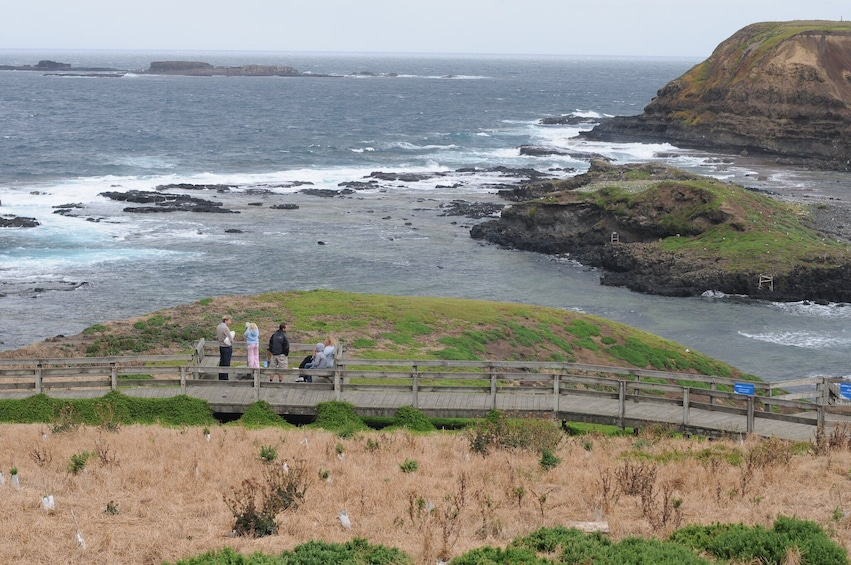 Show item 3 of 8. Private - Phillip Island Tour with Wildlife & Lunch
