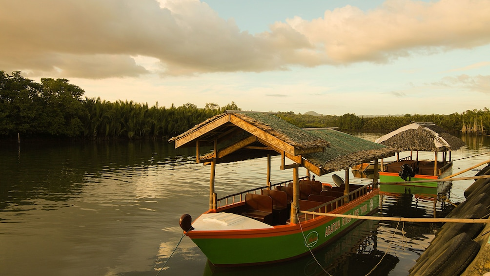 Show item 5 of 5. Docked boats in Bohol