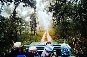 Chitwan Jungle Safari Guided Private Day Tour