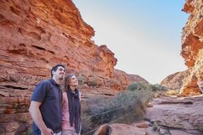 Kings Canyon & Outback Panoramas Tour