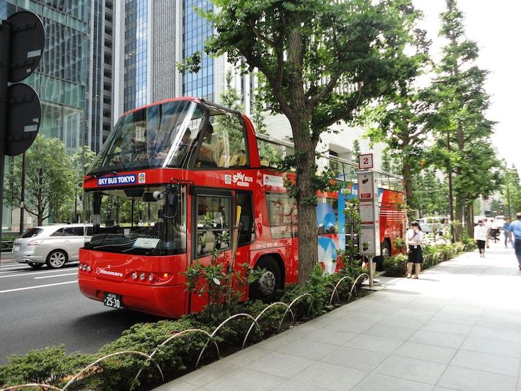 Foto 3 van 5. Hop-On / Off Bus Tour in Tokyo