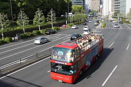 Hop-On / Off Bus Tour in Tokyo