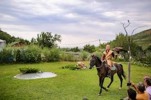 Medeu and Shymbulak + Big Almaty Lake and Falcon show