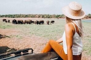 Minneriya National Park Safari from Habarana