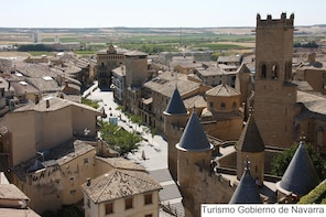 Olite Royal Palace and Ujue medieval village in small groups