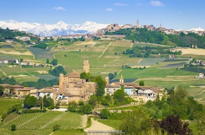 Barolo and Barbaresco wine tour