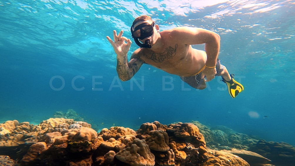 Show item 9 of 9. Catamaran Phi Phi Islands & Khai Island Day Trip Snorkeling