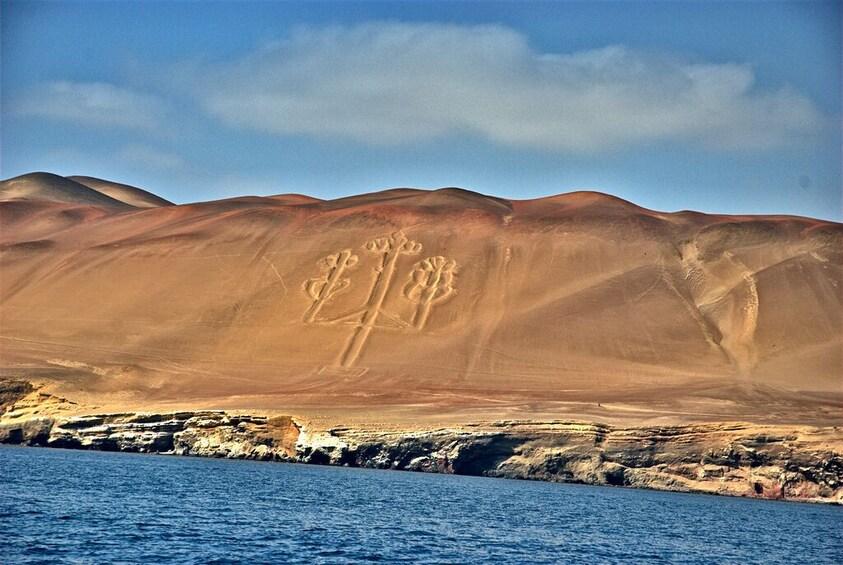 Show item 4 of 10. Ballestas Islands & Chandelier Tour from Paracas