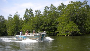 Private Balapitiya River Safari Half-Day Tour
