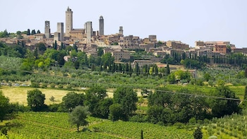 San Gimignano, Chianti & Montalcino small group from Siena