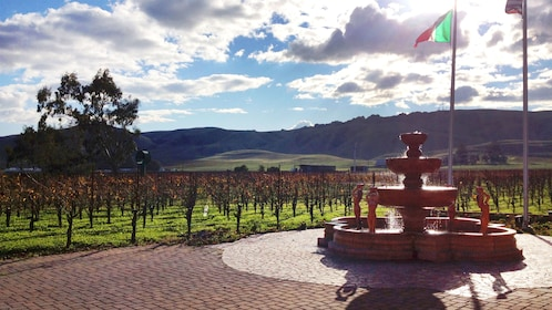 Fountain at winery in Sonoma Valley