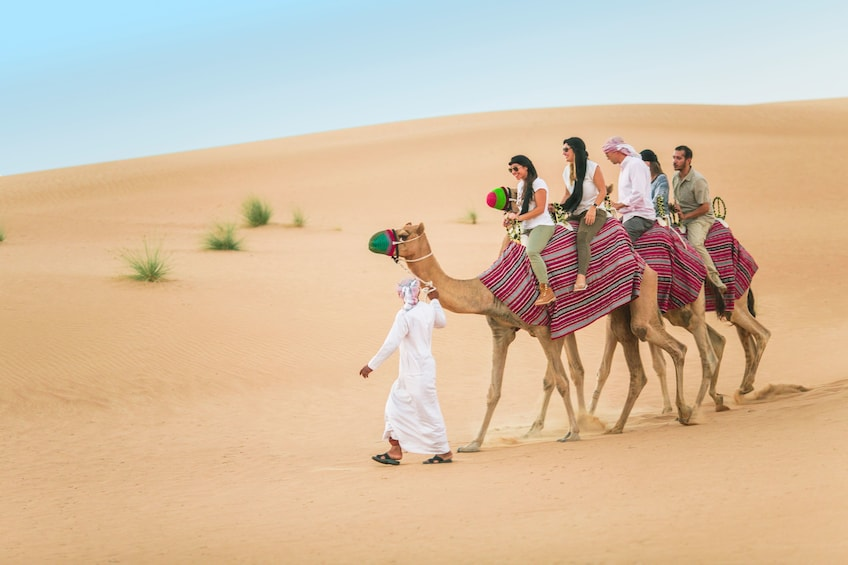 Show item 1 of 10. Heritage Camel Safari