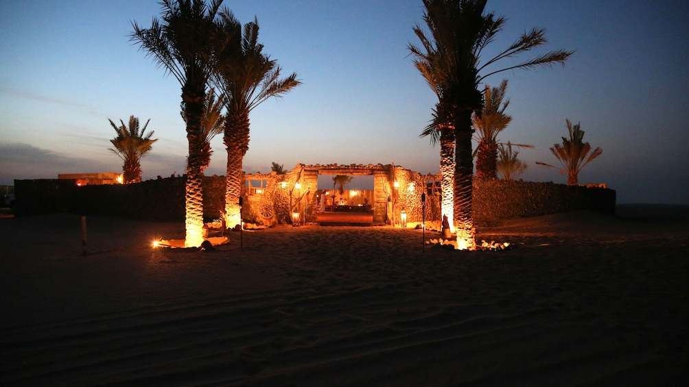 Show item 3 of 10. palm trees lit up at entrance to Dubai Desert Conservation Reserve