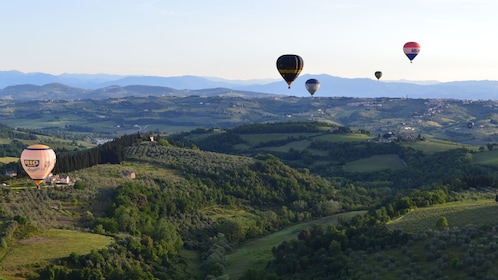 Hot air balloons over Tuscany