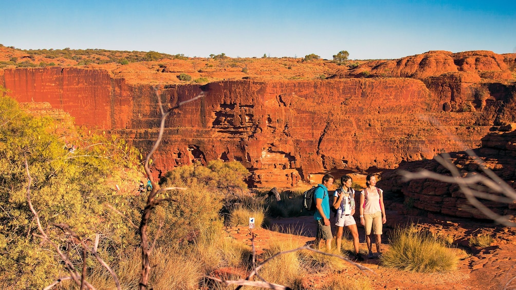 Group walking in Kings Canyon in Central Australia