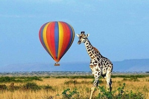 Balloon safari in Murchison Falls National Park