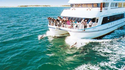 Boat departing for dolphin watching at Port Stephens