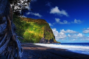 Private Adventure in Waipio Valley
