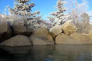 Chena Hot Springs Round Trip Tour