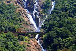 Dudhsagar waterfalls SIC tour with guide & Lunch