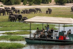 Chobe Day Trip from Livingstone