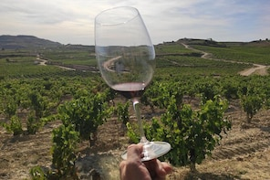 La Rioja winery visit with tasting and traditional lunch in small group tou...