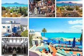From Hammamet: Full-Day Tour of Carthage, Sidi Bousaid, Bardo and Tunis Med...