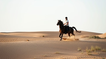 Ausritt in der Wüste am Winners Equestrian Club