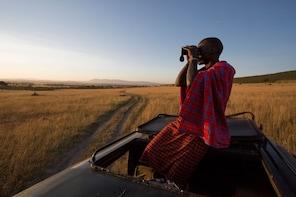 1 Day Maasai Mara Safari